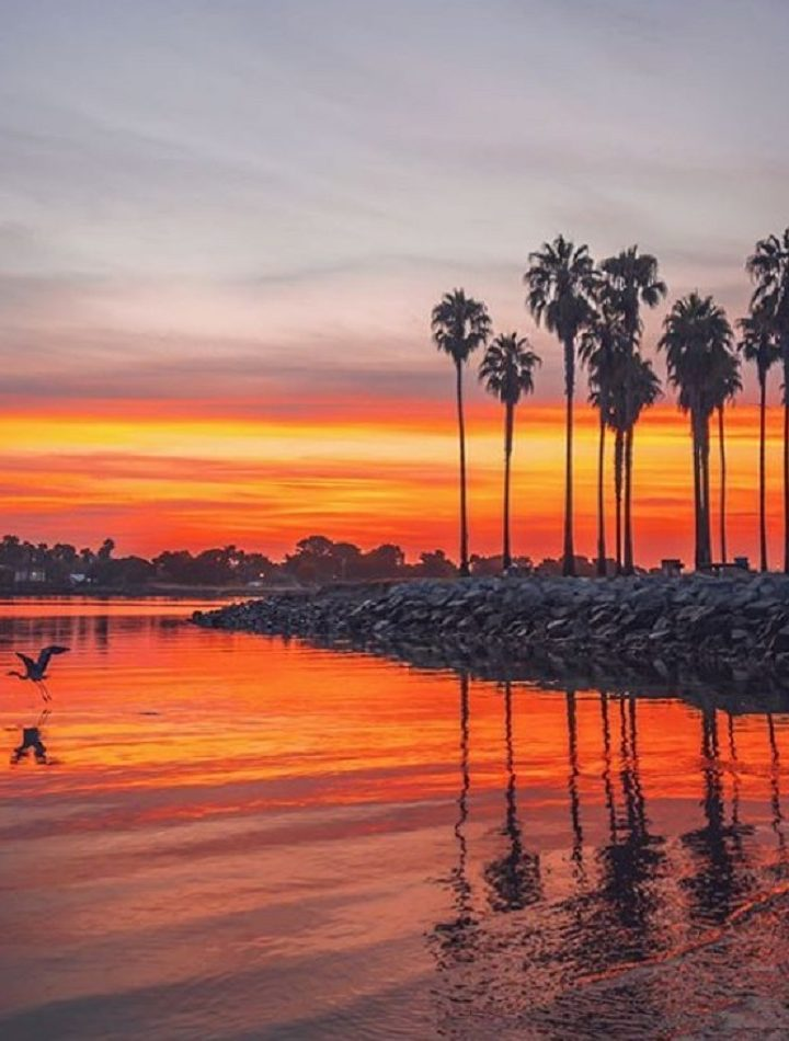 Best Family-Friendly Spots To Uncover In San Diego