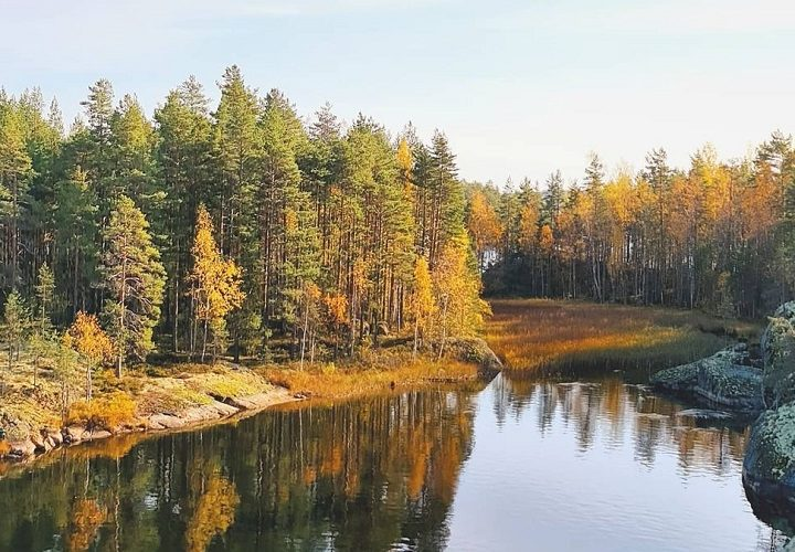 Incredible reasons to visit Lake Saimaa, Finland