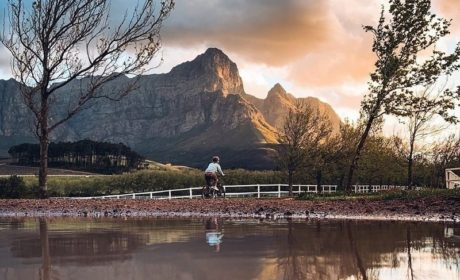 Reasons to add South Africa to your travel bucket list right away